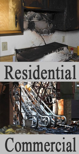 mold remediation services in Springfield
