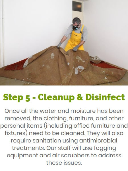 water damage cleanup & disinfection