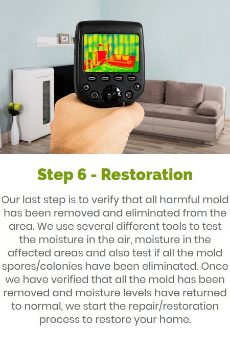 Step 6 Verification & Restoration